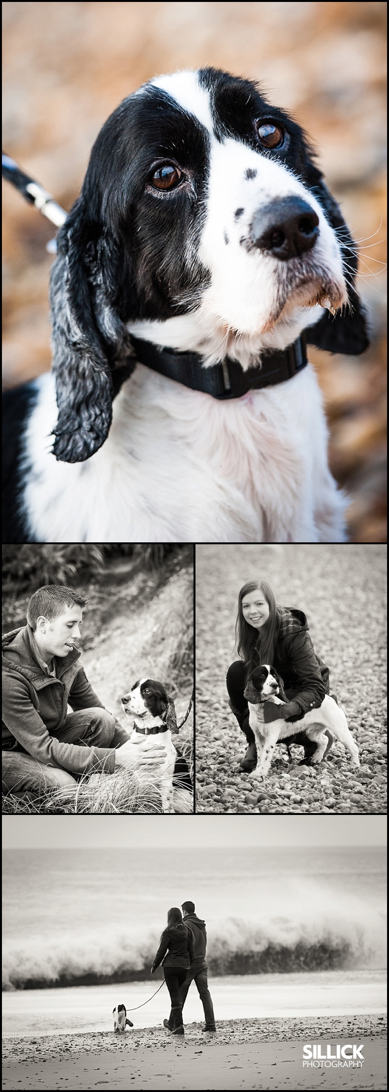 Kayley & Stephen, Hengistbury portrait session, Sillick Photography